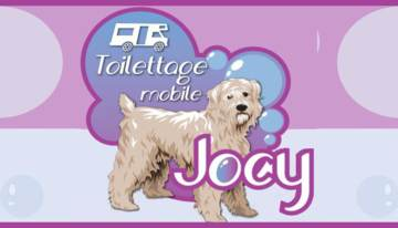 Toilettage Mobile Jocy